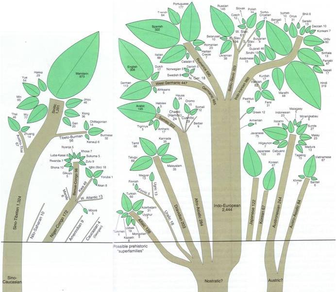 Language Families, their relationship and Origins (I apologize for the quality of the image) Photo credit: http://bashapedia.pbworks.com/w/page/13960889/Language%20Families